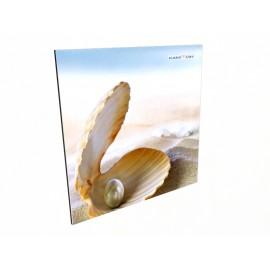 Керамический обогреватель КАМ-ИН в ванную комнату с изображением жемчужина
